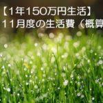 【1年150万円生活】11月度の生活費を概算してみました