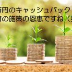 政府の施策の恩恵・・・1万円のキャッシュバックがありました(笑)