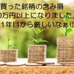 株式含み損300万円超えましたが、まだまだ退場する気はありません。
